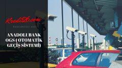 Anadolubank OGS ( Otomatik Geçiş Sistemi), Anlaşmalı Bankalar (Vergi Tahsil Yetkisi Verilen Bankalar )