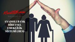 Anadolubank Bireysel Emeklilik Sistemi ( BES), Bireysel Emeklilik Sisteminde Otomatik Katılım – Anadolubank
