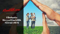 Fibabanka Bireysel Emeklilik Sistemi ( BES), Fiba Emeklilik ve Hayat A.Ş.