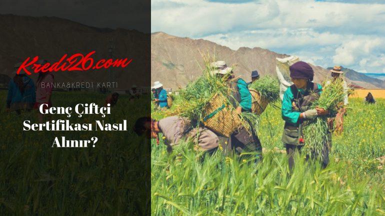 Genç Çiftçi Sertifikası Nasıl Alınır?, Genç Çiftçi kayıt ve başvuru işlemi nasıl yapılır?