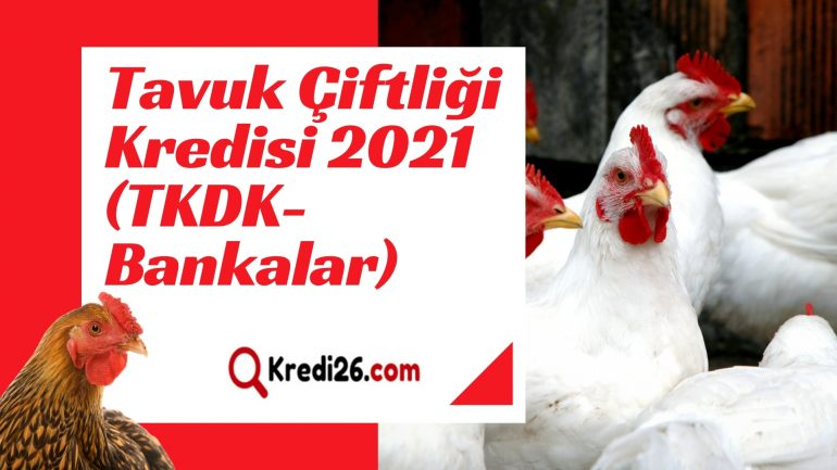 Tavuk Çiftliği Kredisi 2021 (TKDK-Bankalar) | Kredi Şartları Neler
